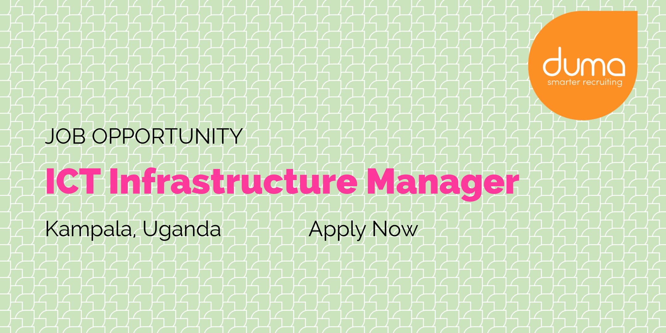 infrastructure manager job description